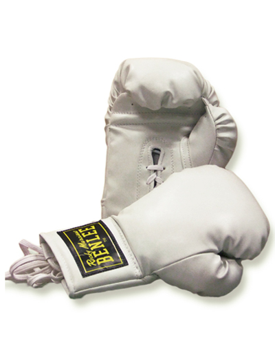 BenLee autograph boxing glove 1